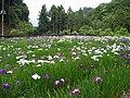 十枚の郷 - panoramio.jpg