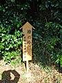 椿の小径 - panoramio.jpg