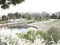 池と花壇 - panoramio.jpg