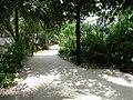 莉莉海灘渡假村 Lily Beach Resort - panoramio (1).jpg