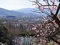 錦織公園 梅の里からの眺め 2013.3.15 - panoramio.jpg
