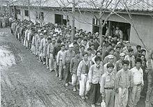 戦争 死者 朝鮮