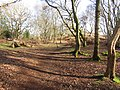 -2021-03-15 A footpath on Crostwight Common (6).JPG