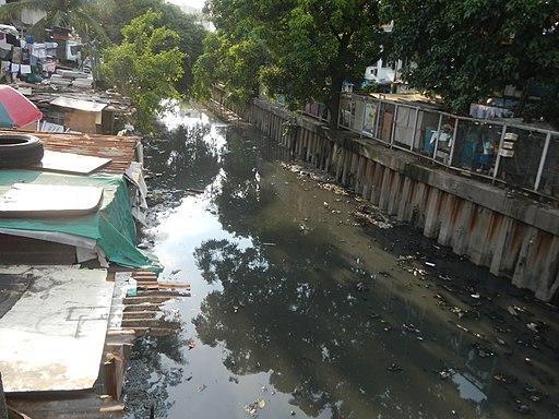 02915jfBridge Estero Arnaiz Avenue Barangays Makati Pasay Cityfvf 13