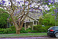 18 Northcote Road, Lindfield, New South Wales (2010-12-04).jpg