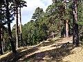 2011-09-17 Camino viejo del Paular - panoramio (3).jpg