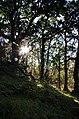 2012 Trip to Oban (8110250913).jpg