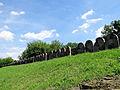 2013 New jewish cemetery in Lublin - 18.jpg