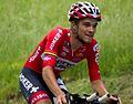 2014 Giro d'Italia, tosh van der sande (17166594613).jpg