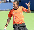 2014 US Open (Tennis) - Tournament - Victor Estrella Burgos (15097481955).jpg
