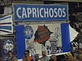 2015-02-13 - Caprichosos de Pilares (26).jpg