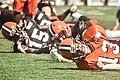 2016 Cleveland Browns Training Camp (28614634131).jpg