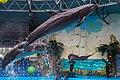 2017-05-16 Show in Kyiv Dolphinarium 02.jpg