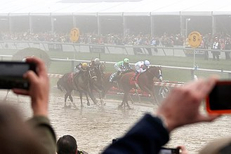 Justify (horse) - Justify narrowly wins in a blanket finish at the 2018 Preakness