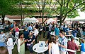 2018 Ann Arbor Summer Festival Top of the Park Alumni Event (41343674200).jpg