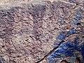 2nd century Buddhist site, well and inscriptions, Kodavali Andhra Pradesh - 12.jpg
