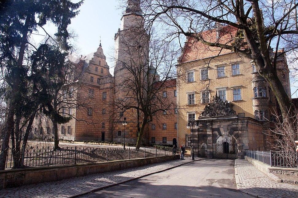 3273viki Zamek w Ole%C5%9Bnicy. Foto Barbara Maliszewska