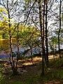 3389. Molodezhnoe. Chyornaya River.jpg