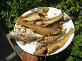 3412Fried fish in the Philippines 37.jpg