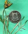 345декоративна медаль на честь Маріуполя.jpg