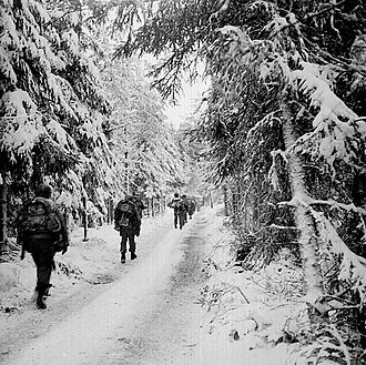 517th Parachute Regimental Combat Team - 517th PRCT in the Hurtgen Forest.