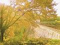 63700 Saint-Éloy-les-Mines, France - panoramio (4).jpg
