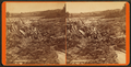 7000000 logs. Carritunk (Caratunk) Falls, Solon, Maine, from Robert N. Dennis collection of stereoscopic views.png