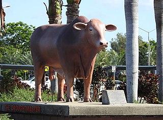 West Rockhampton, Queensland Suburb of Rockhampton, Queensland, Australia