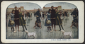 A Merry Bunch, Atlantic City, N.J, from Robert N. Dennis collection of stereoscopic views.png