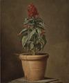A Potted Plant (Henri Horace Roland de la Porte) - Nationalmuseum - 22481.tif