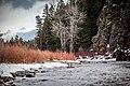 A flowing winter stream (Unsplash).jpg