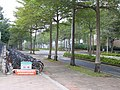 A section of Chuangxin Road (with parked bicycles) in National Chung Cheng University, Taiwan.jpg