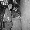 Aap in Artis (Chimpansee Nora) die een sigaar rookt met oppasser J. van Schalkwijk (3236806642).jpg