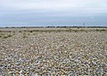Across the Shingle to Lade - geograph.org.uk - 445678.jpg