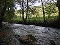 Afon Gwaun at Cilrhedyn - geograph.org.uk - 1549385.jpg