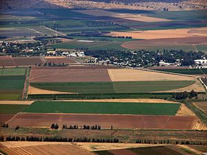 Hula Valley - Hula Valley farmland