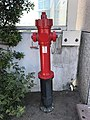 Airport Olbia - fire hydrant - juillet 2017.JPG