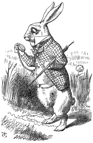 Funny animal - The White Rabbit, illustration by John Tenniel (1865)