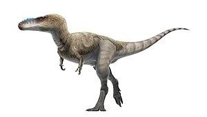 1976 in paleontology - Alioramus