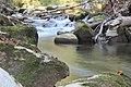 Allondon river.jpg
