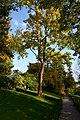 Alter Botanischer Garten Zürich 2012-10-22 15-05-31.JPG