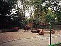 American Bison( Parc de la Ciutadella ) Zoo Barcelona - panoramio.jpg