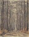 An Allée in the Woods MET DP804875.jpg