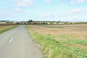 Andelu - Approach