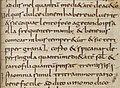 Anthimus St Gallen 762 p 223.jpg