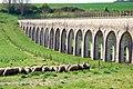 Aqueduc-vanne-moutons.jpg