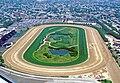Aqueduct Racetrack.jpg