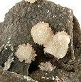 Aragonite-Hematite-252543.jpg