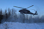 Arctic Wolves and Flying Dragons team up for MEDEVAC training 130616-A-AX238-002.jpg