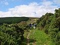 Around Frenni Fawr Footpath - geograph.org.uk - 1280165.jpg